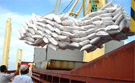 Mekong Delta improves post-harvest rice quality MARCH 19, 2016 BY QDND